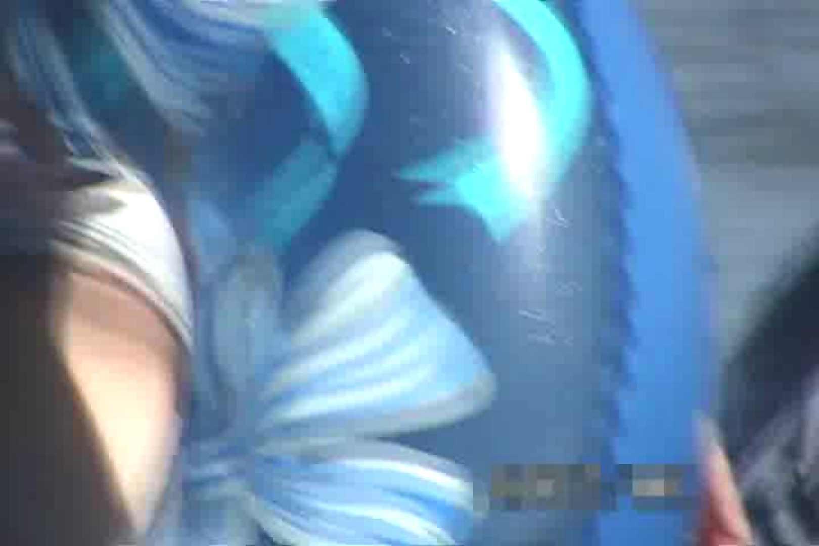 巨乳おまんこ:美少女を探せ!!真夏のビキニハーレムVol.4:ピープフォックス(盗撮狐)