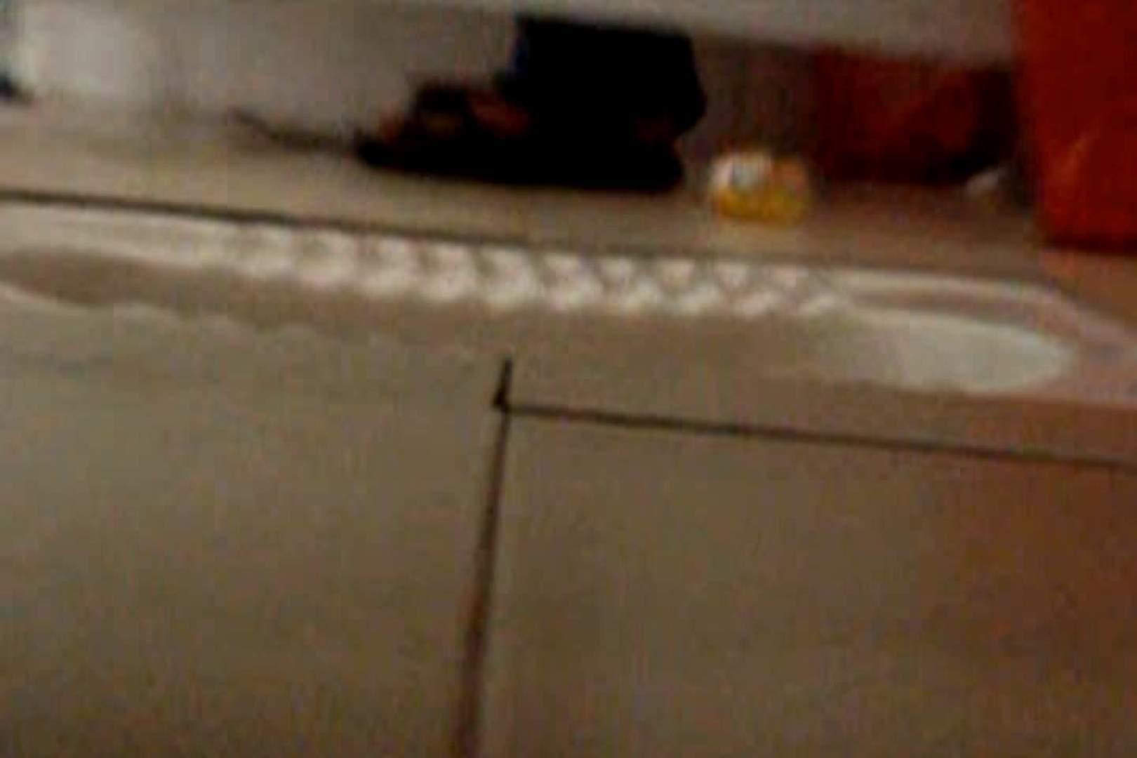 巨乳おまんこ:ぼっとん洗面所スペシャルVol.5:ピープフォックス(盗撮狐)
