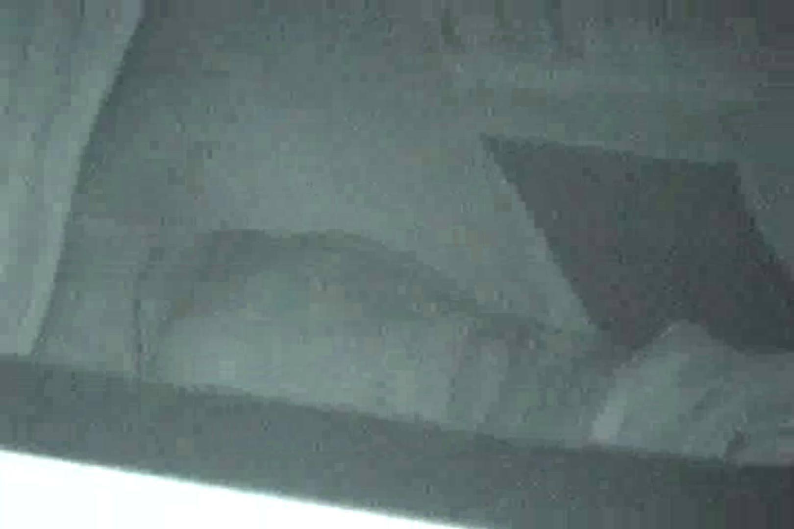 巨乳おまんこ:充血監督の深夜の運動会Vol.102:ピープフォックス(盗撮狐)