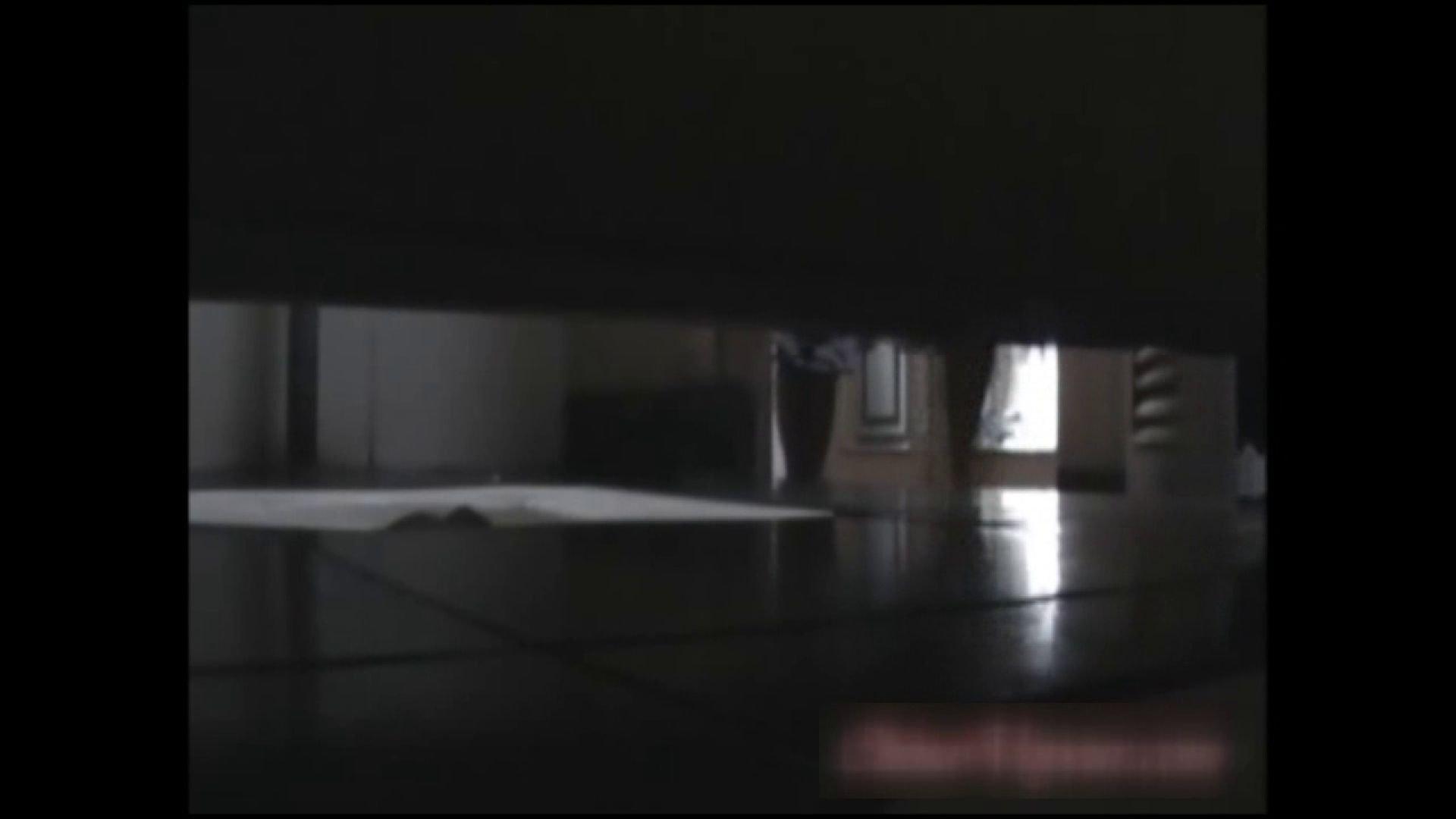 巨乳おまんこ:洗面所で暗躍する撮師たちの潜入記Vol.31:ピープフォックス(盗撮狐)