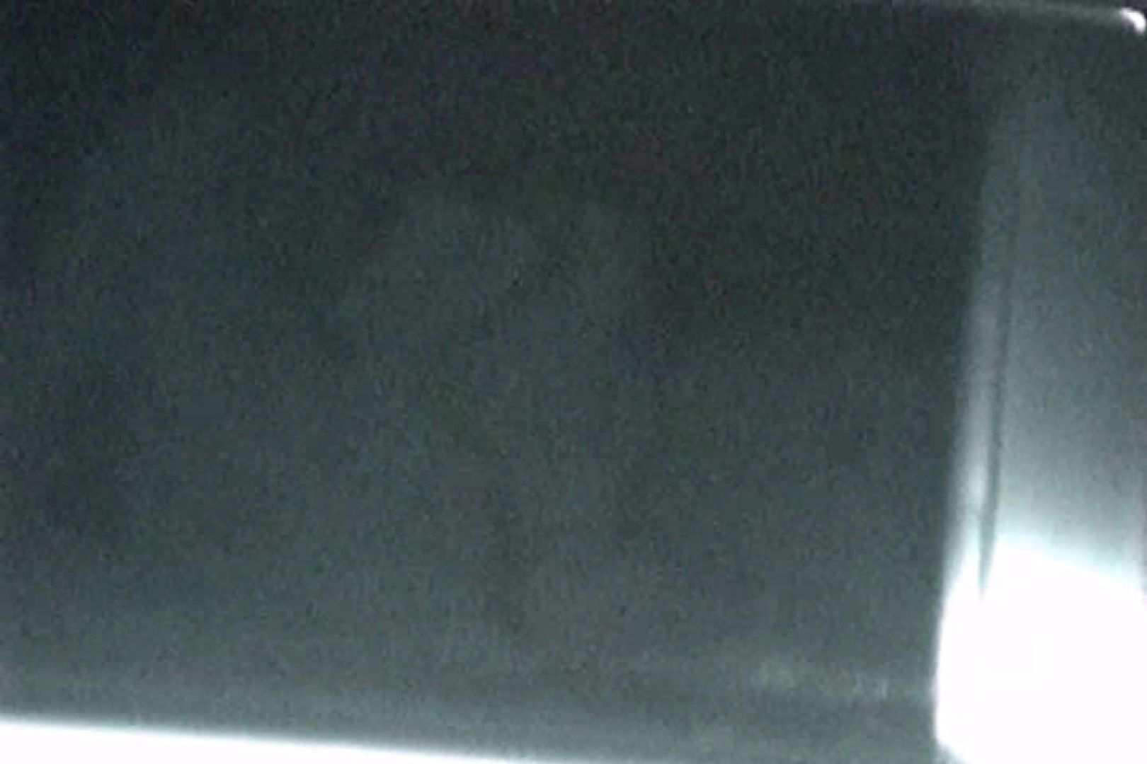 巨乳おまんこ:充血監督の深夜の運動会Vol.132:ピープフォックス(盗撮狐)